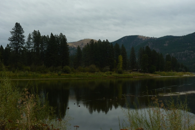 reflection of the mountains and trees on the Clack Fork River